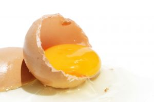1001416_egg_3.jpg