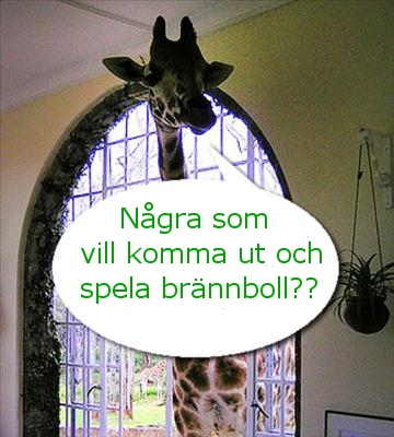 giraffbrannboll.jpg