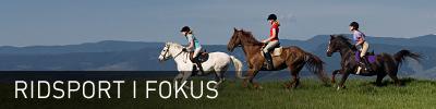 Sidhuvud för Ridsport iFokus. Länk till startsidan för denna sajt