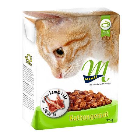 kattungar mat när
