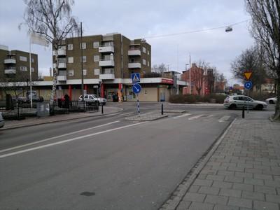 Linné1.jpg