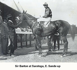 Sir Barton.jpg