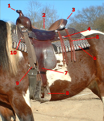 Sv_western_saddle_parts.png