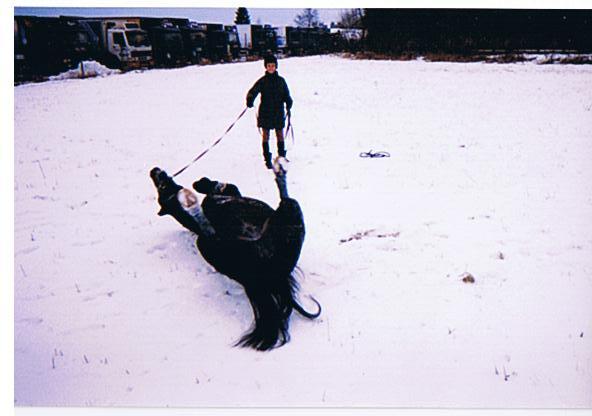 rulla i snön.jpg