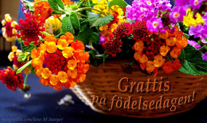 grattis hälsningar Mitt liv med Asperger : Tack för alla grattis hälsningar grattis hälsningar