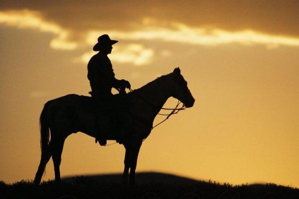 web_Cowboy_silhouette.jpg