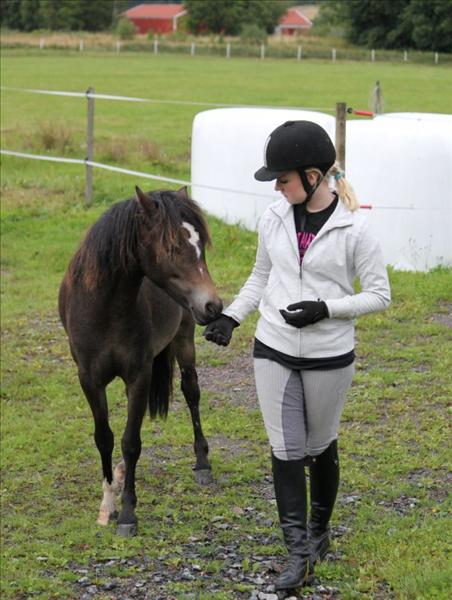 ponny love.JPG