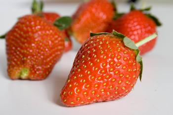Bilden föreställer jordgubbar