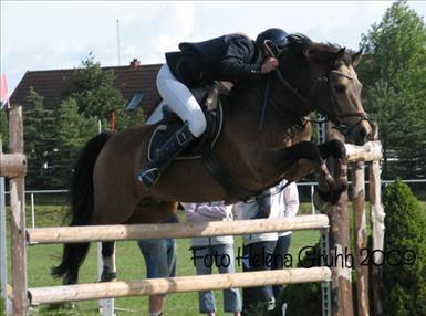 Dimmans Eros RNF 182, Svenskt ponnyderby 2009.