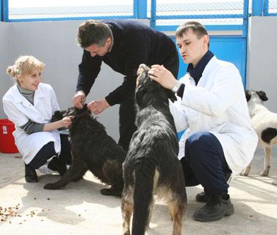 Odessa_Tierarzt_Pfleger.jpg