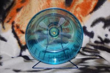 art om hjul, rolly