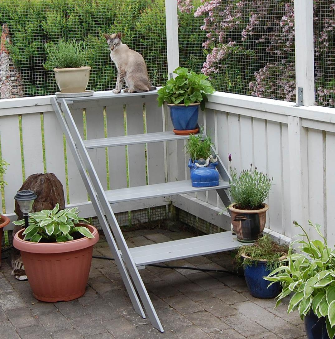 Tips på inredning till rastgård/balkong   allmänt kattprat ...