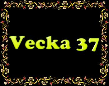 Vecka 37