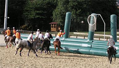 horseball2.jpg