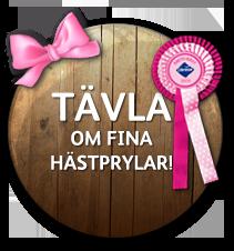 badge-tavla-om-fina-hastprylar.png