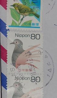 Kopia av Kopia av Kopia av DSC_4440.JPG