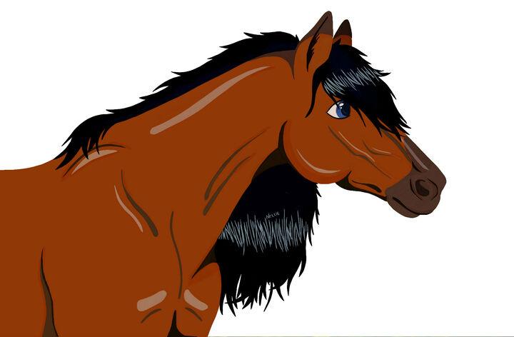 filmer om hästar