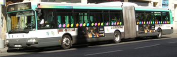 ledbuss.jpg