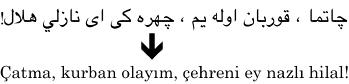 Turkiska med arabisk och latinsk skrift