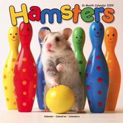 Hamsterkalender.jpg