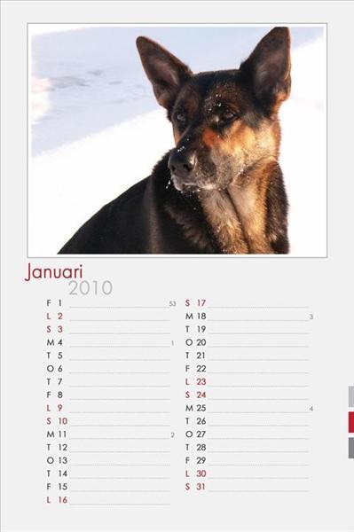 Januari.jpg
