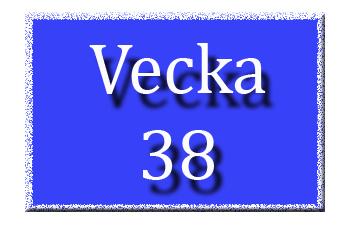 Vecka 38