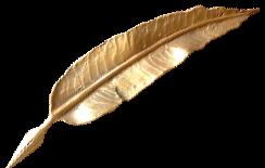 guldfjäder.png