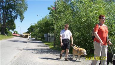 hund34.jpg