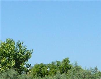 Himlen är blå.