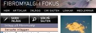ifokus_meny.JPG